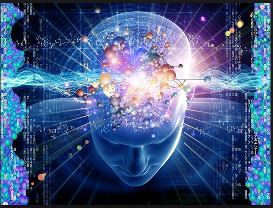 brain bio-radio neurons TV K-channel pbs39  biochemistry brain stem