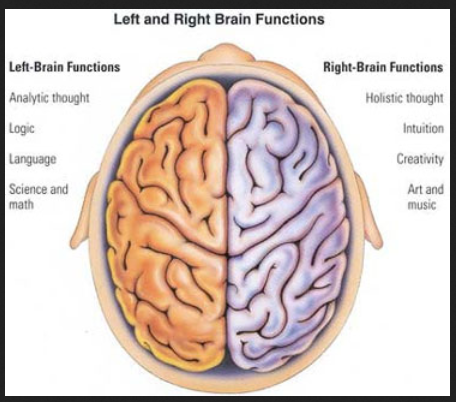 brain cole hall 2 parts