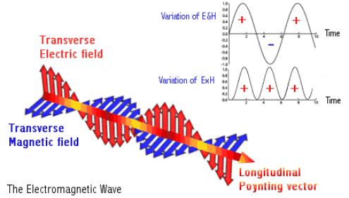 poy vector electro EM korea-1